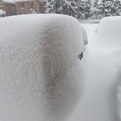 Our cars are buried