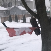 Wicked Winds off Lake Huron