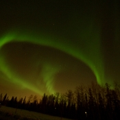 Aurora Borealis on Thickwood Blvd