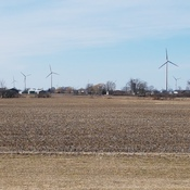 Windmills in West Lincoln.