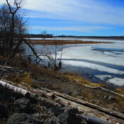 Ice in the Ottawa River Looking Towards Britannia Conservation Area