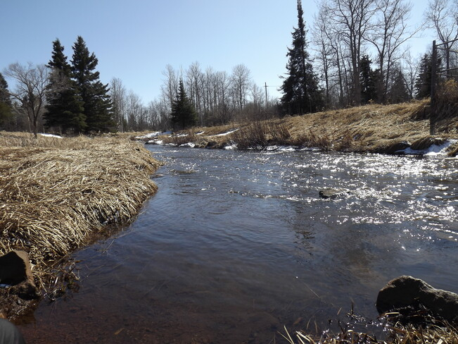 MCVIKAR CREEK is ALIVE 44 Farrand St, Thunder Bay, ON P7A 3H5, Canada