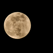 April 2020 Supermoon - The Pink Moon