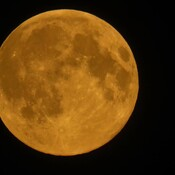 Supermoon (pink moon )