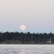 Big Moon over Northwest Bay