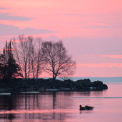 A pink sunrise on Lake Superior