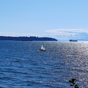 Sailboats in West Vancouver