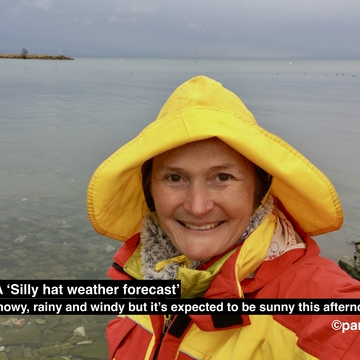 Seagull photo bomb on silly hat weather forecast, rain but sunny later