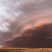 Scalloped shelf cloud