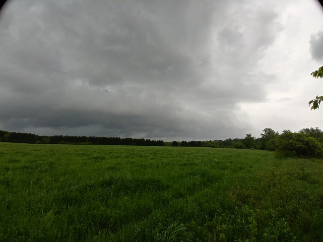 may 29 storm.1 Waterloo, ON