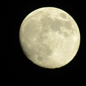 Last nights moon almost full ...