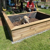 A good spot to grow Puggles!