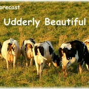 Udderly Beautiful