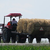 Hay on the move
