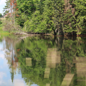 Reflections of Minden Lake