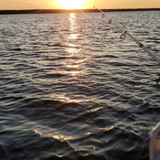 Sunset Fishing