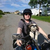 Neal & Benji riding on the Harley