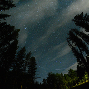 Perseid Meteor Meteor Shower