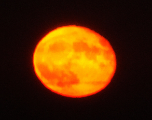 September 2020 Full Moon 97% Visible Toronto - Etobicoke -- Humber Bay