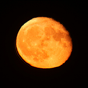 Near PerfectHarvest FULL Moon (September 2020r) Photo