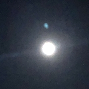Moon and mars so close together ive never seen that before