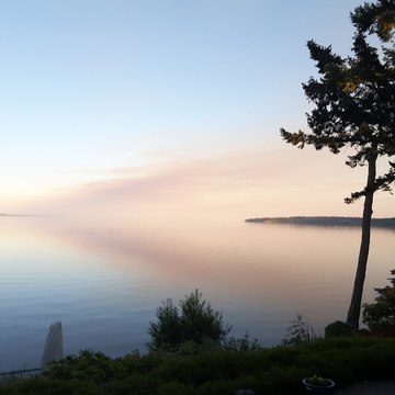 Smoke Cloud, Cordova Bay, Victoria Sept 2020