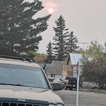 the red sun glaring over the trees as its smokey and hazy outside