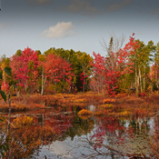 Pond Colours Elliot Lake
