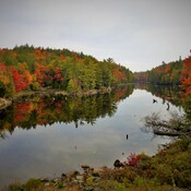 Beauty of Fall Hits Algonquin