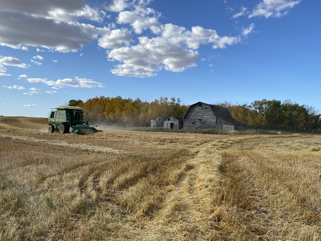Harvest 2020 West Bend, Saskatchewan | S0A 4M0