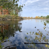 Autumn at Mud Lake