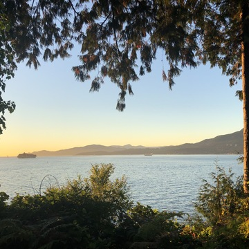 Stanley Park sunset