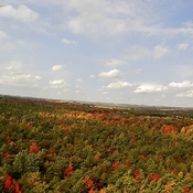 Fall colours from the sky