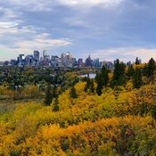 Fall in Calgary, September 29, 2020