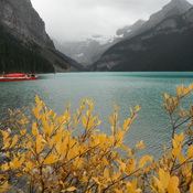 Canadian Rockies Autumn