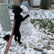 Jett loving his first snowman