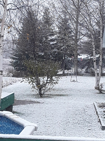 1 ere neige 20 oct. Saint-Thomas-Didyme, QC