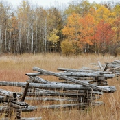 Fall scenes on Manitoulin