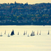 SAILBOAT TRAFFIC JAM