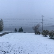 First snowfall in Birchy Bay