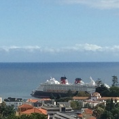 Nov 19 2020 funchal Disney cruise pandemic over
