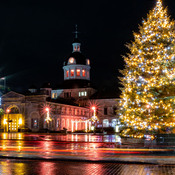 Springer Market Square Christmas Lights