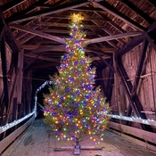 Covered Bridge Christmas