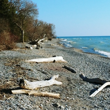 Walking along Lake Ont