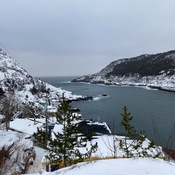 Petty Harbour and The Battery