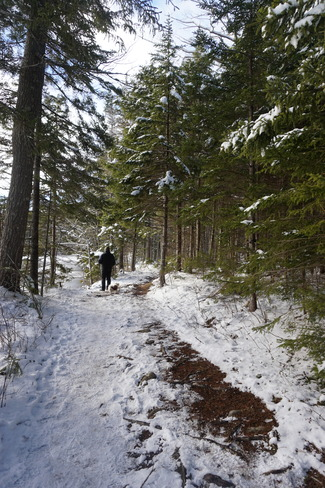 trail walk Mount Uniacke, NS