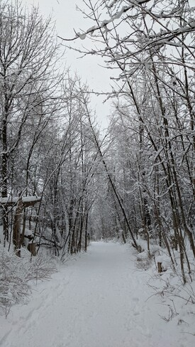Snow covered trail Parc National du Mont-Saint-Bruno, QC