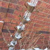frozen watering cans