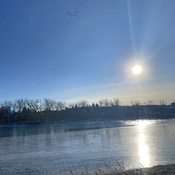 Sunshine on the South Saskatchewan
