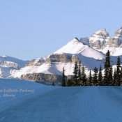Winter Driving On The Icefields Parkway